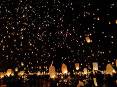 bright-celebration-crowd-431722